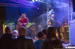 Grey Moray (18.09.2015, Celle)