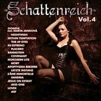 Cover: Schattenreich Vol. 4
