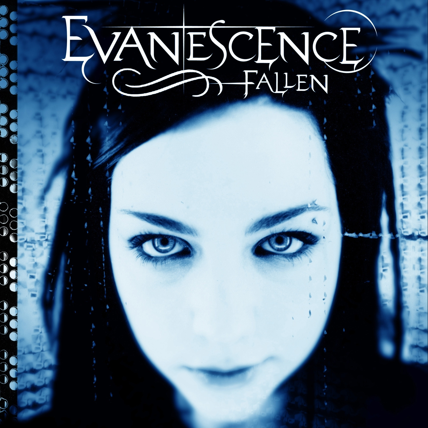 Evanescence: Fallen (2004) Book Cover