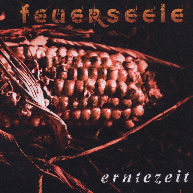 Feuerseele: Erntezeit (2012) Book Cover