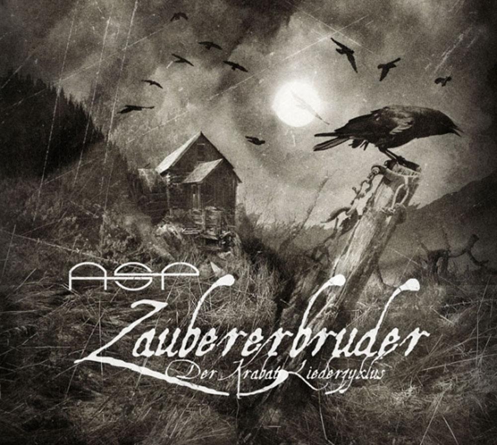 ASP: Zaubererbruder (2008) Book Cover