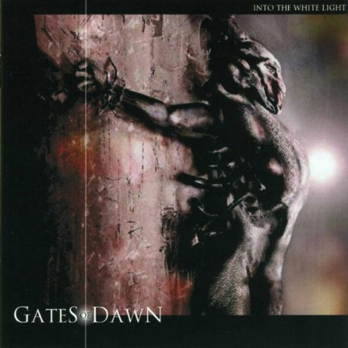 Gates of Dawn: Into the white light (2006) Book Cover