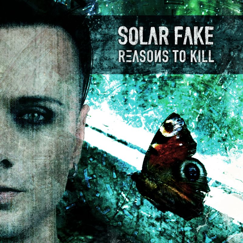 Solar Fake: Reasons To Kill (2013) Book Cover