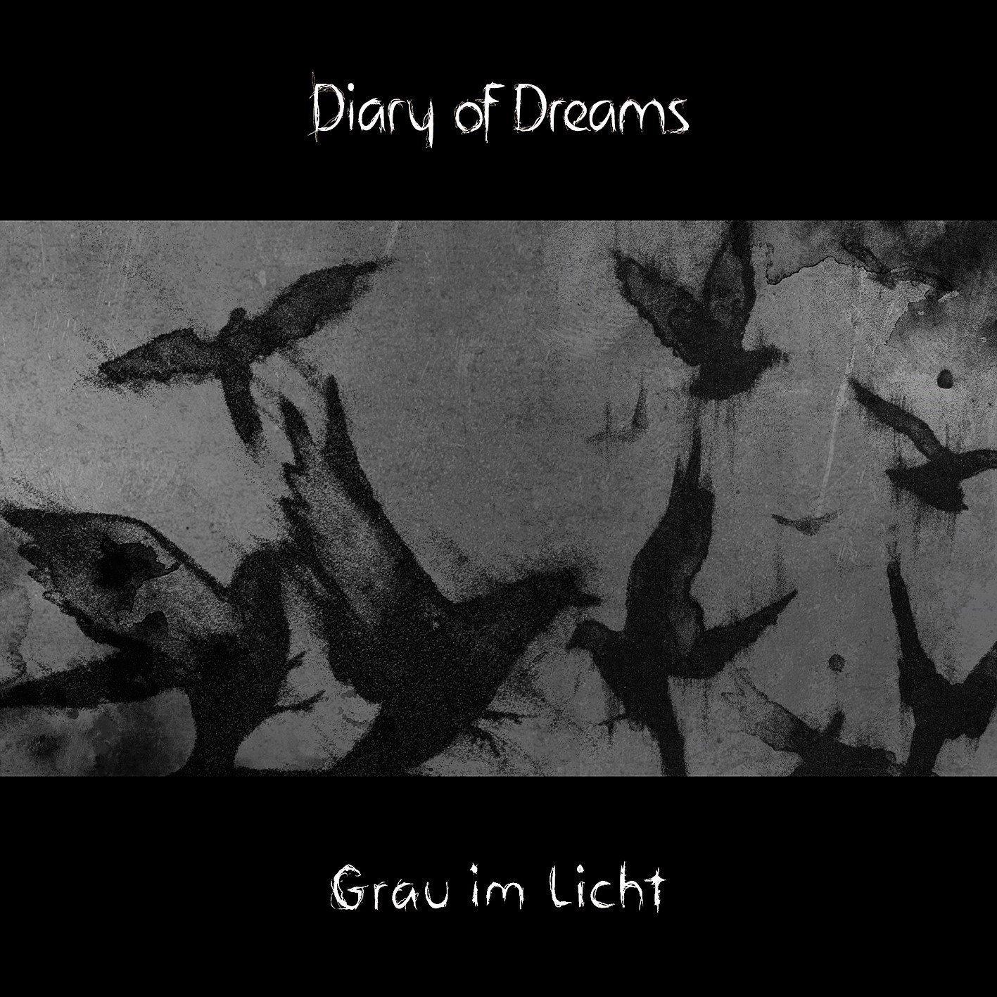 Diary of Dreams: Grau im Licht (2015) Book Cover