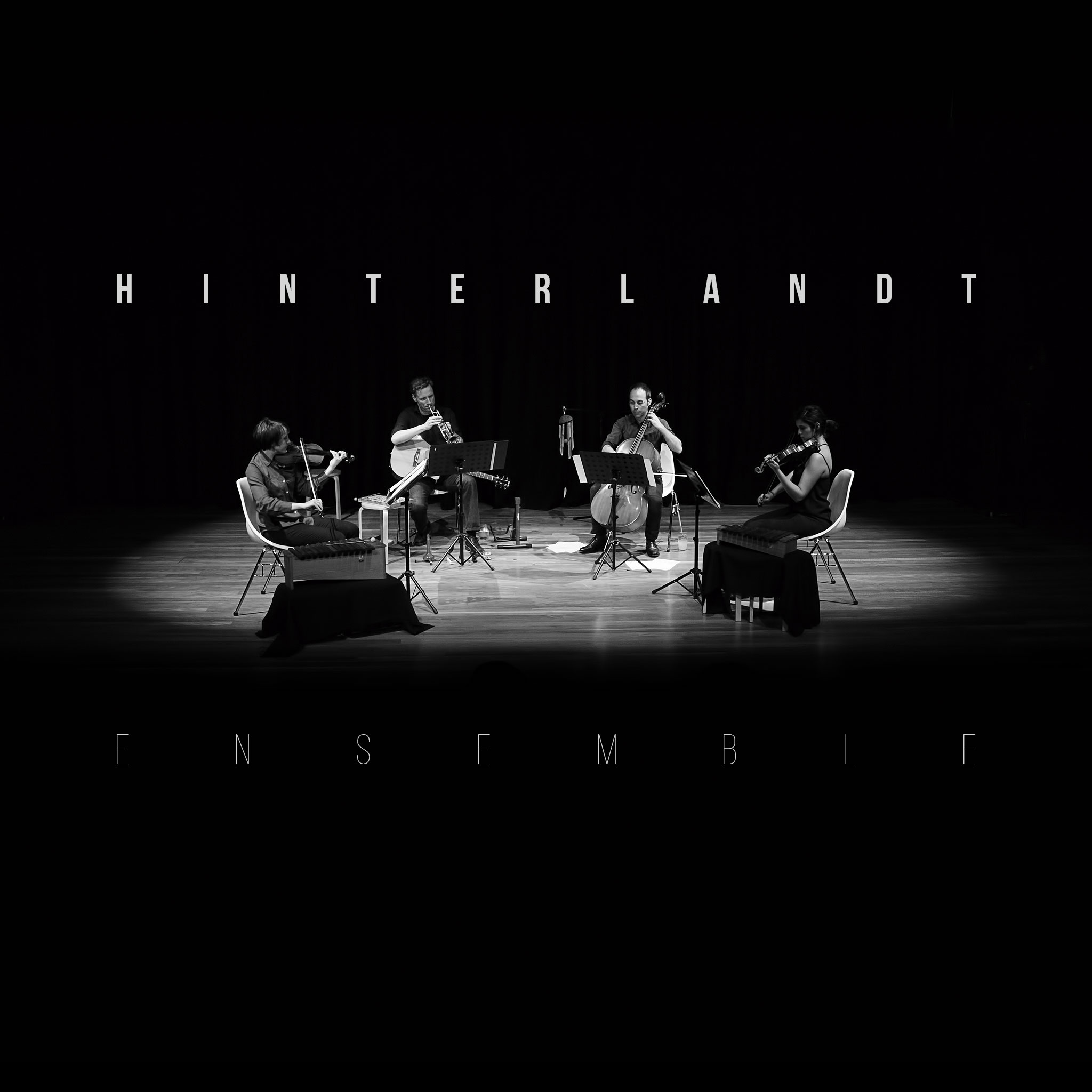 Hinterlandt: Ensemble (2016) Book Cover