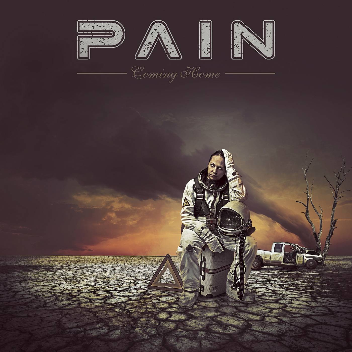 Pain: Coming Home (2016) Book Cover
