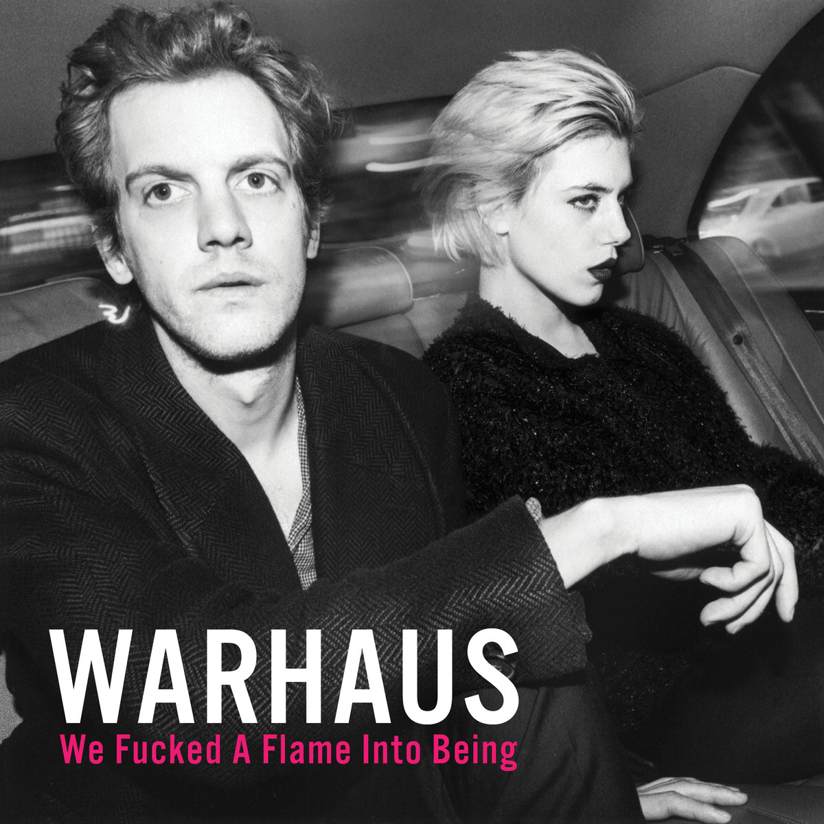 Warhaus: We Fucked a Flame Into Being (2016) Book Cover