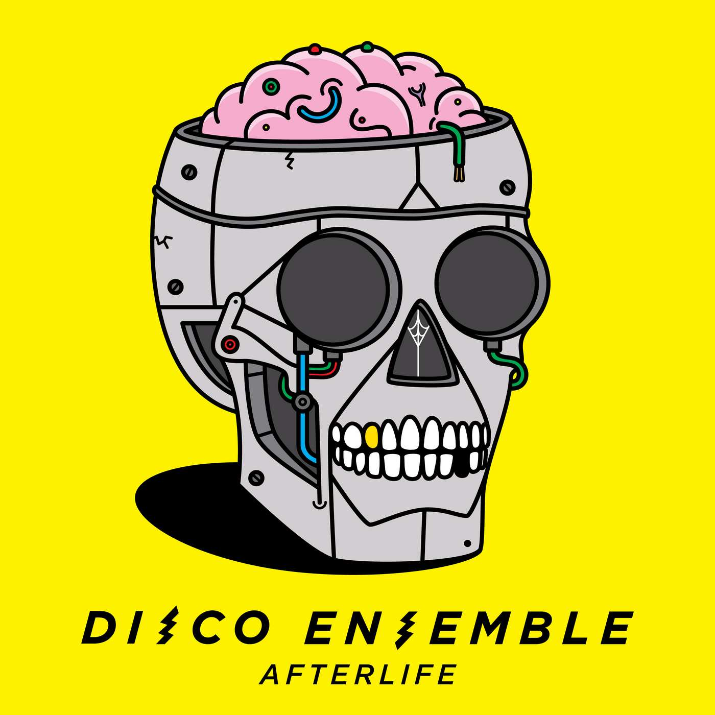 Disco Ensemble: Afterlife (2017) Book Cover