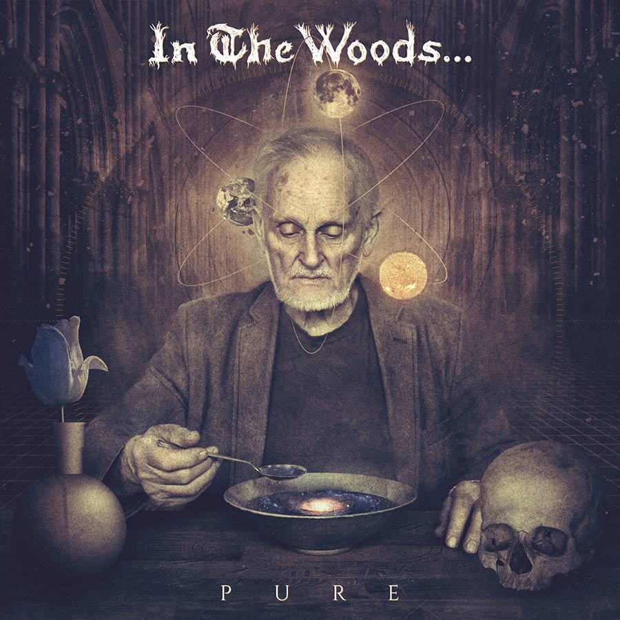 In The Woods...: Pure (2016) Book Cover