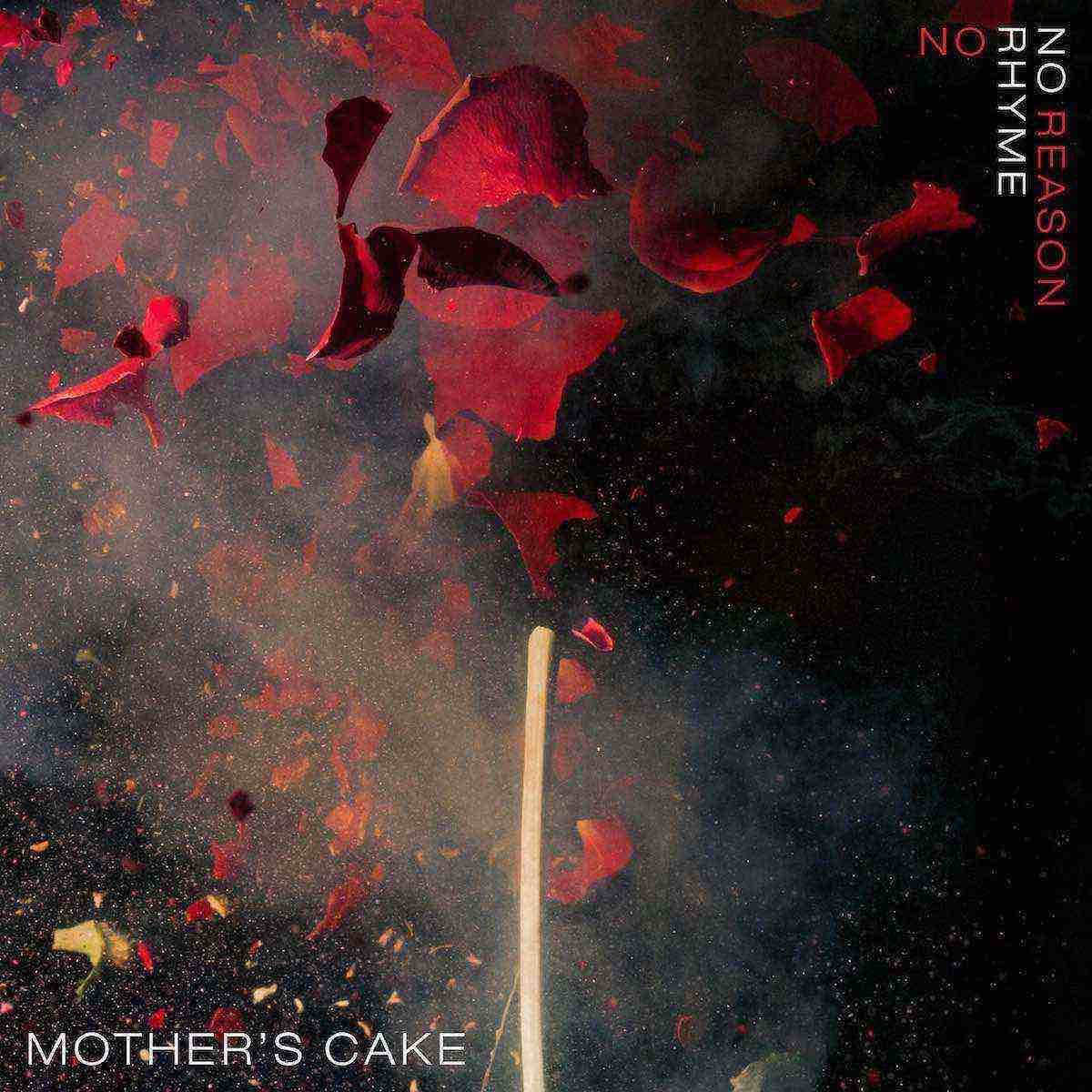 Mother's Cake: No Rhyme No Reason Book Cover
