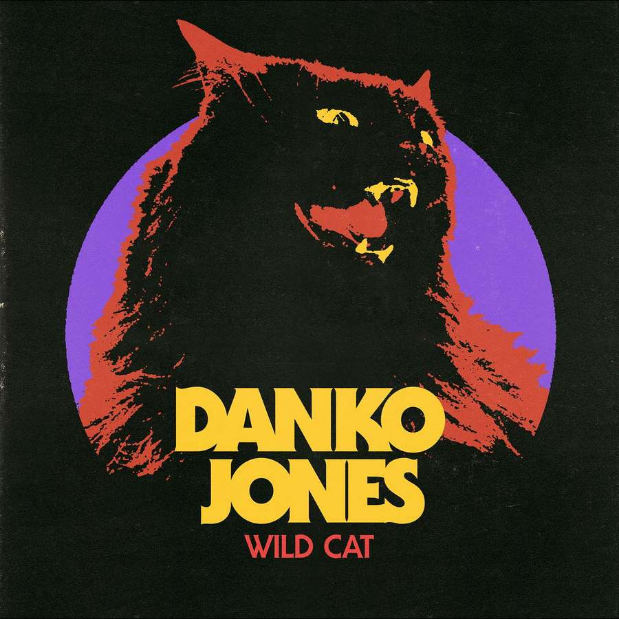 Danko Jones: Wild Cat (2017) Book Cover